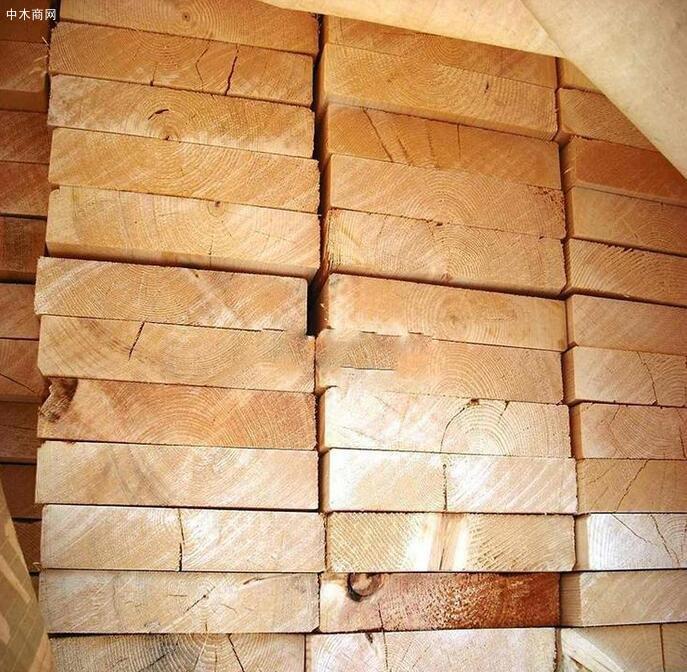 辐射松建筑木方的作用有哪些及挑选的几个技巧图片