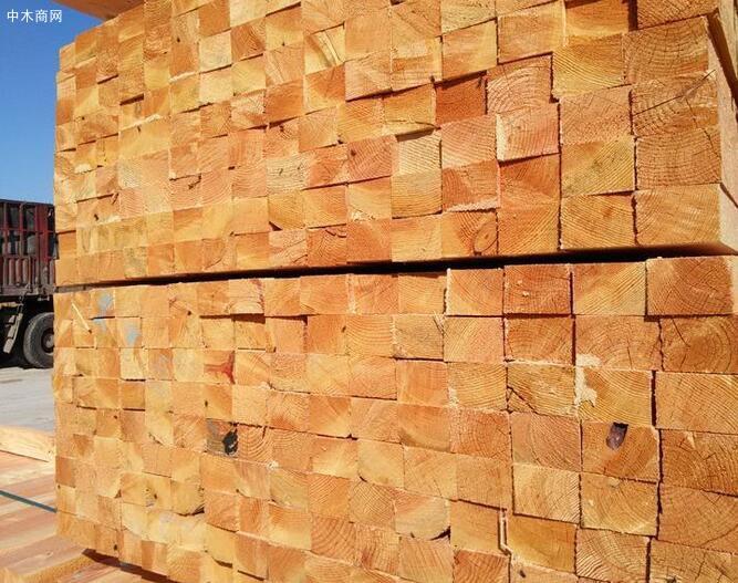 辐射松建筑木方的作用有哪些及挑选的几个技巧批发