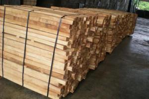 国内库存减少橡胶木价格上调100元/立方米