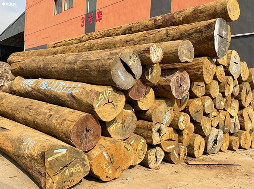 中高端红木原材价格行情