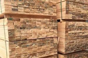 2020年美国软木进口同比增长4.5%