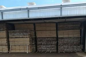 俄罗斯白桦木烘干板材原产地直销