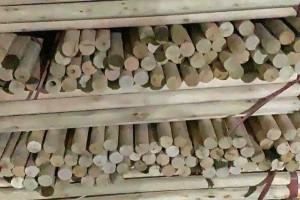 现金收桉木木芯