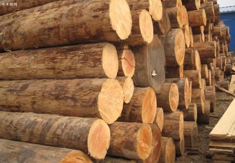 广西榕江县工业园区木材加工业生产火热