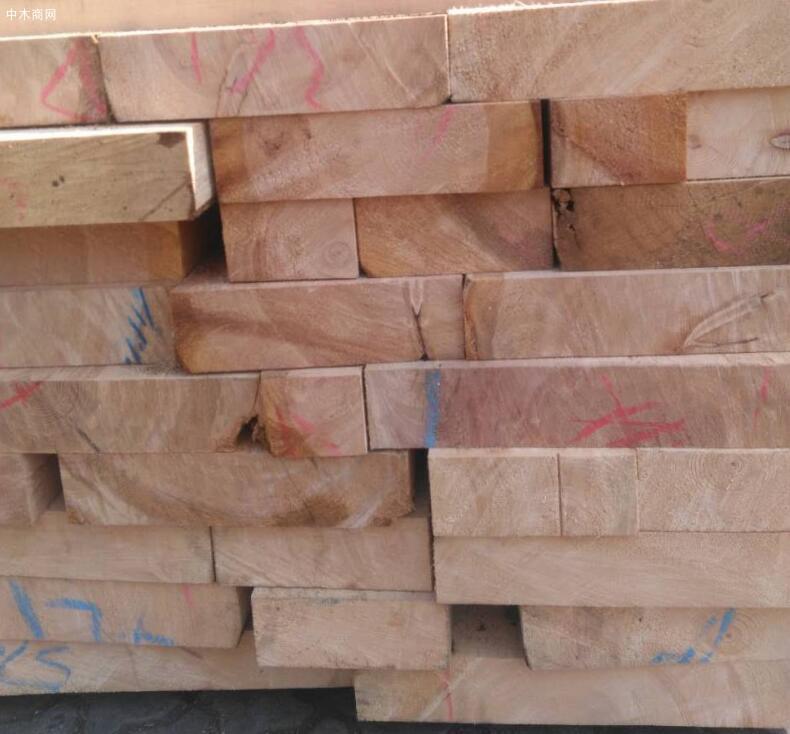 全国铁杉,白松等木材价格再次全面上调