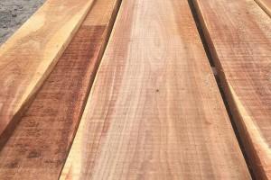 河南榆木板材图片