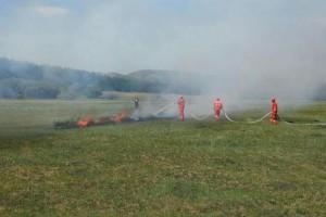 国家林草局部署全国春季森林草原防火工作