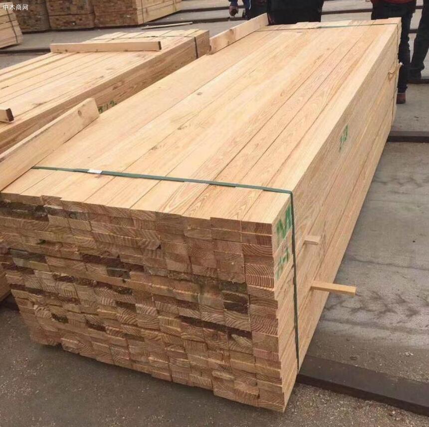 """长兴岛""""木材深加工产业链""""正式开建"""
