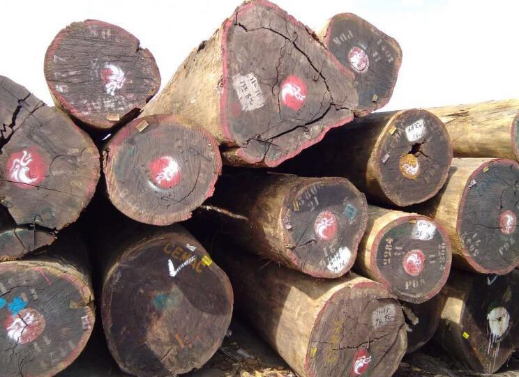 因疫情和天气加蓬原木供应不畅