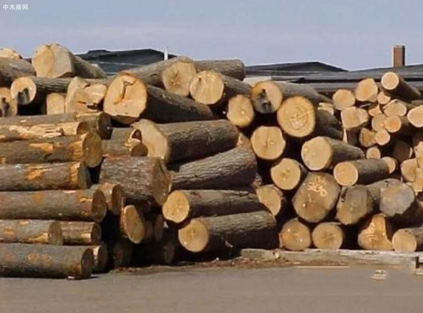 预计越南2021年林产品出口增至145亿美元