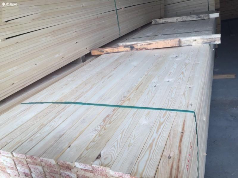 北美SPF木材价格行情上涨