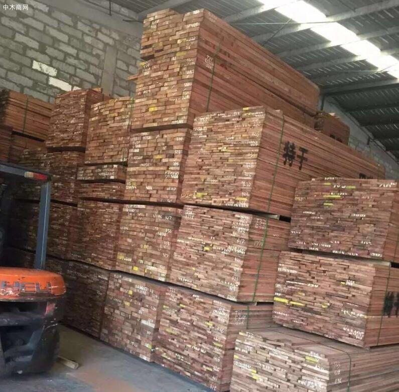 今日最新巴西花梨木价格行情走势