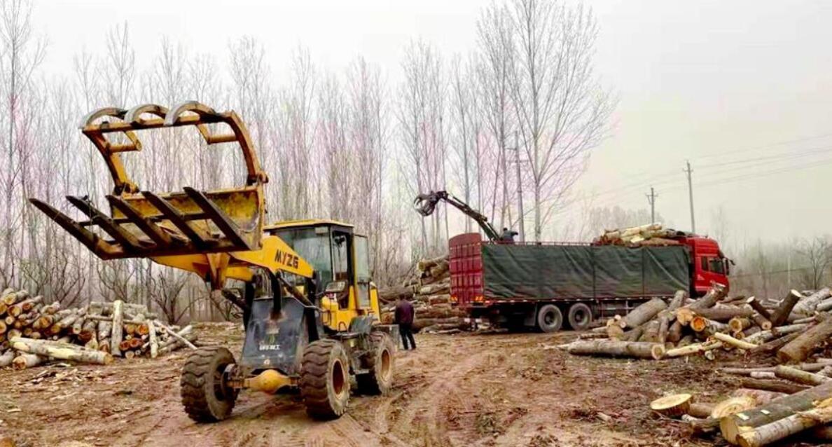 河南省三门峡一木材加工厂被拆除