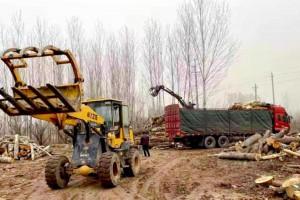 河南省三门峡一木材加工厂被拆除!