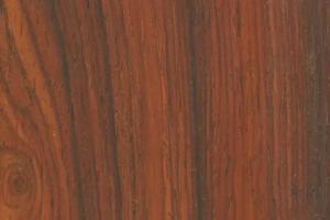 微凹黄檀木材的构造特征?