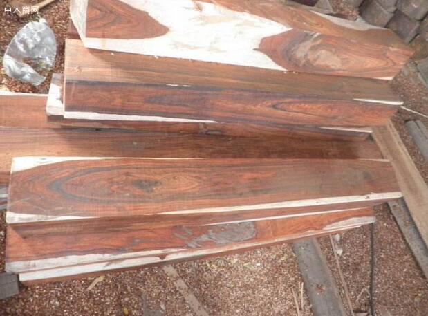 微凹黄檀木材的构造特征采购
