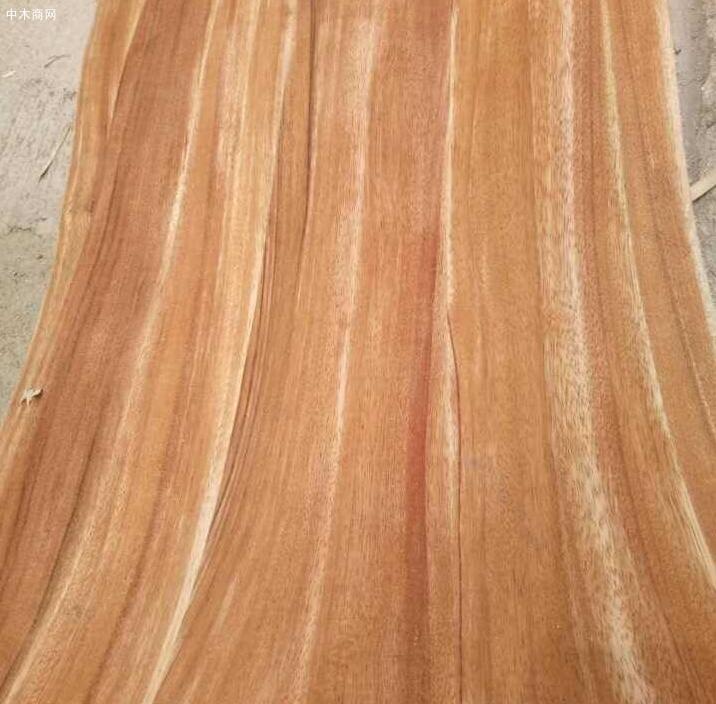 非洲卡丝拉木材的特性是什么价格