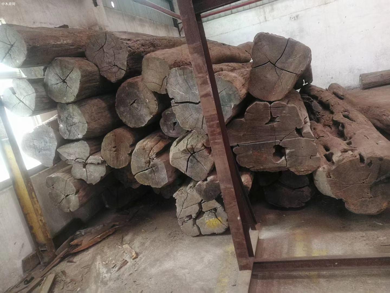 缅甸柚木原木价格多少钱一吨