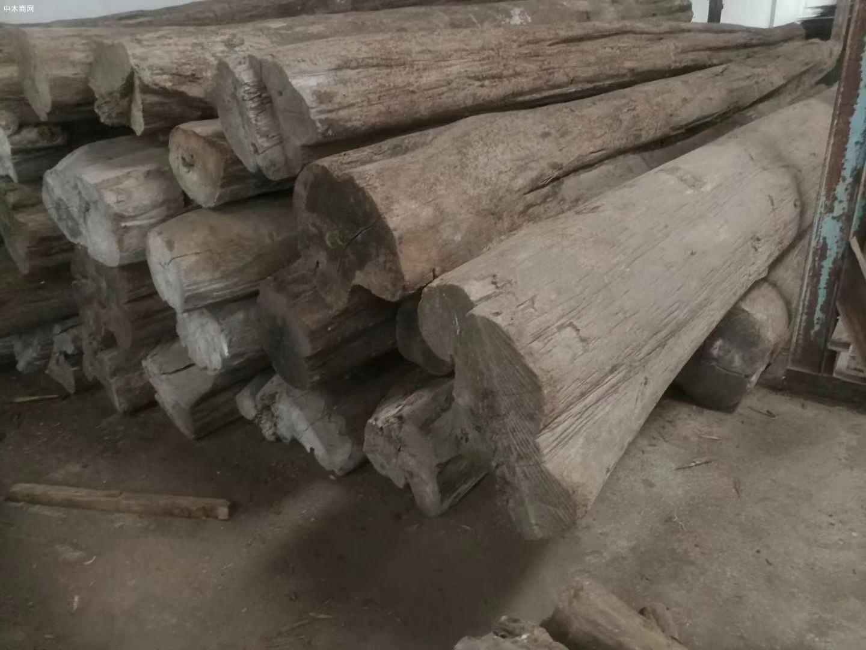 缅甸柚木原木价格多少钱一吨图片