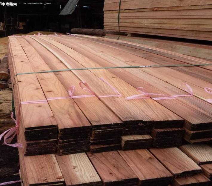 柳杉木材的优点及特点品牌