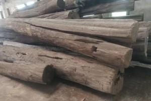缅甸柚木原木板材高清图片