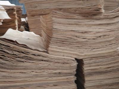 徐州苏杭木业大量供应杨木三拼板皮各种规格大量批发