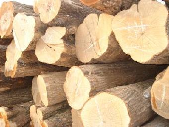 枫木跟胡桃木和橡木比较哪个好厂家