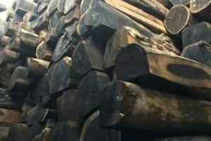 非洲西部原木价格行情_2021年4月15日
