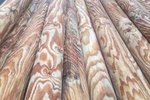 广东木材市场南方松板材价格行情_2021年4月16日
