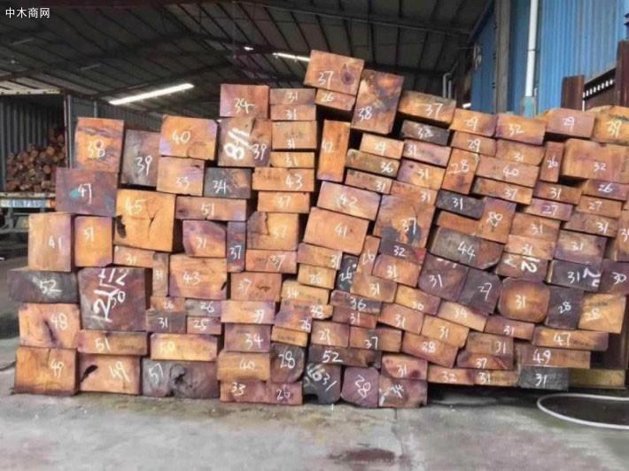 缅甸花梨木原材料价格行情