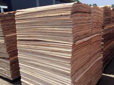 杨木板皮多少钱一张?