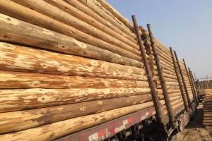 惊!木材、胶黏剂等价格开始下跌…
