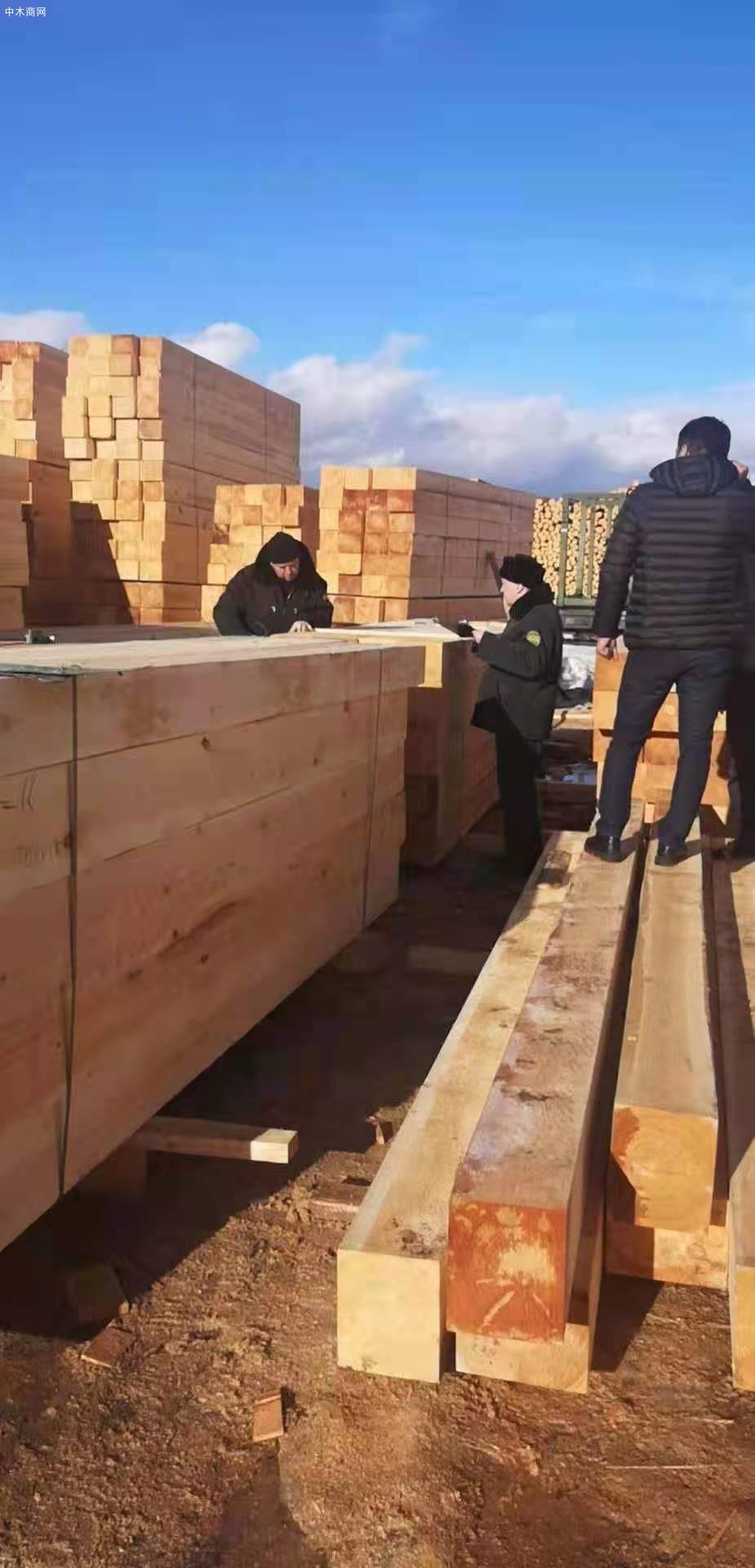 俄罗斯樟子松防腐木供应商质量材质上乘图片