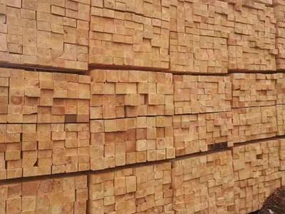俄罗斯樟子松防腐木材料多少钱一米