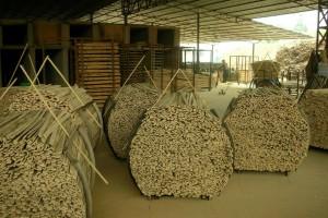 """""""十四五""""木竹产业的目标是什么?"""