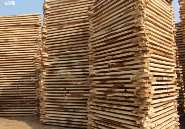 锯材商不可能在短期通过提高产量弥补需求缺口