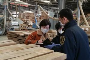 一季度绥芬河海关出口木制品843吨