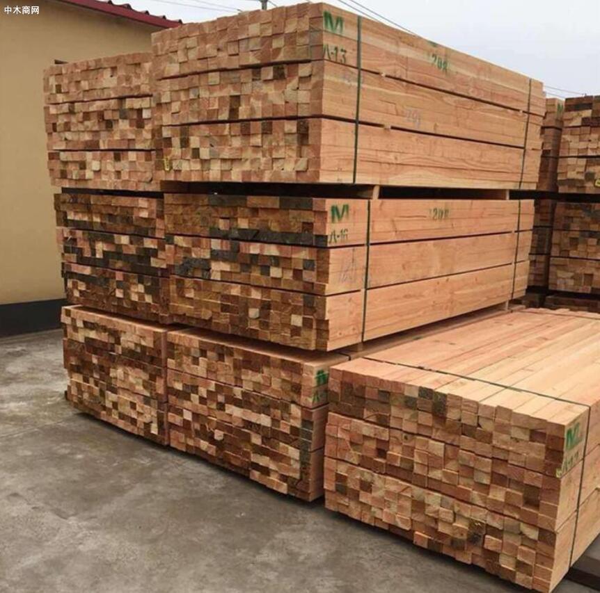 辐射松建筑木方价格行情上涨