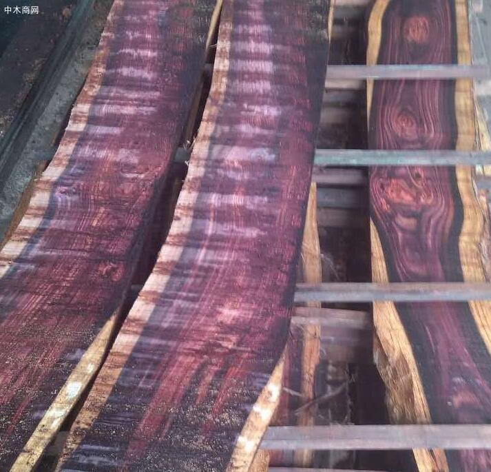 印尼关注非木质林产品开发