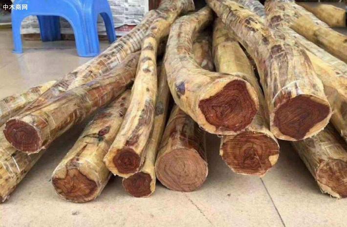 越南举办进口热带木材风险研讨会