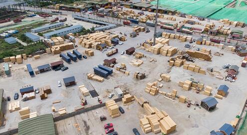 中欧班列助力驻港企业木材年均销售增长30%图片