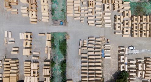 中欧班列助力驻港企业木材年均销售增长30%品牌