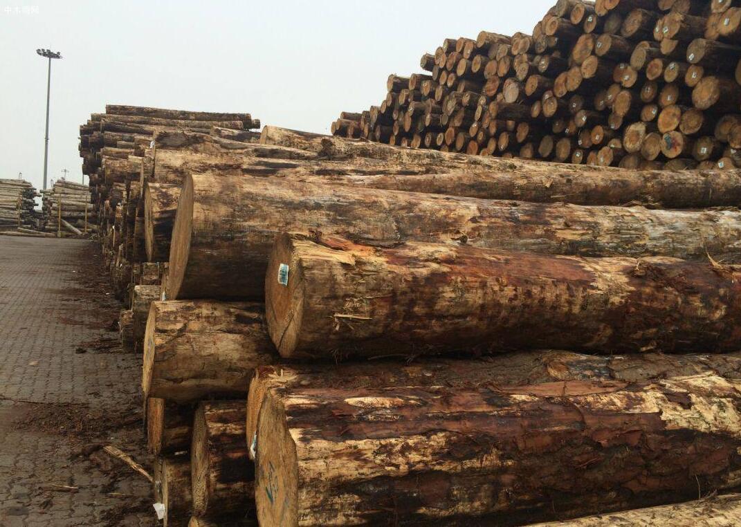 4月底A级辐射松原木的价格是178美元/JASm3