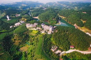 投资32.25亿元!贵阳市国储林将再建36.2万亩