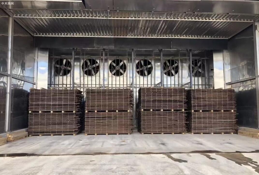 美国黑胡桃原木源头供应商黑胡桃厂家