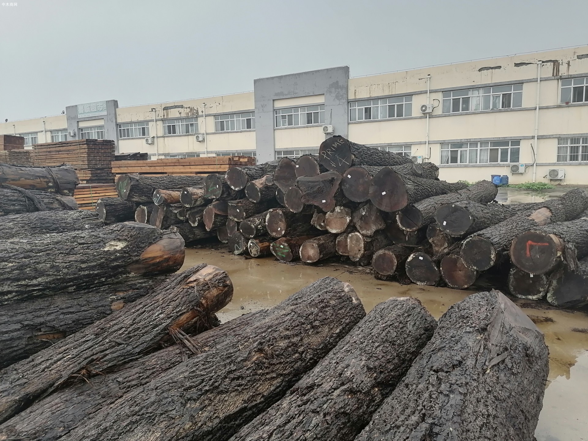 美国黑胡桃原木源头供应商黑胡桃原木分几个等级及黑胡桃六大纹路等级划分供应