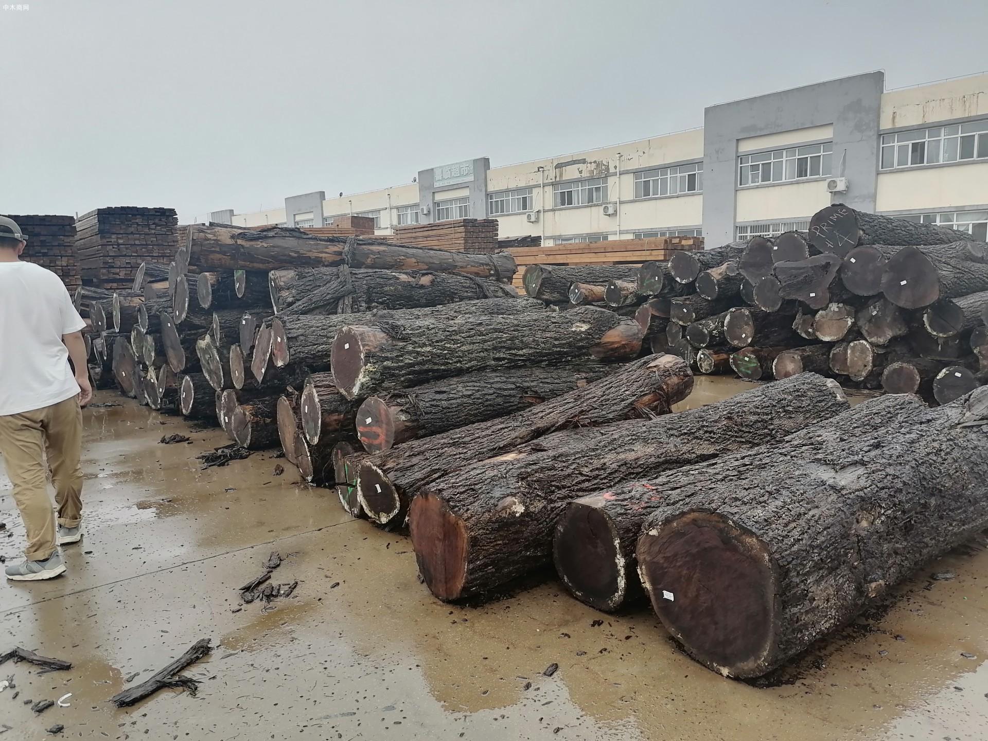 美国黑胡桃原木源头供应商黑胡桃原木分几个等级及黑胡桃六大纹路等级划分批发