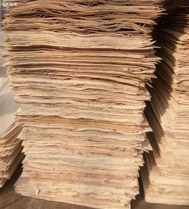 杨木单板首选苏杭木业