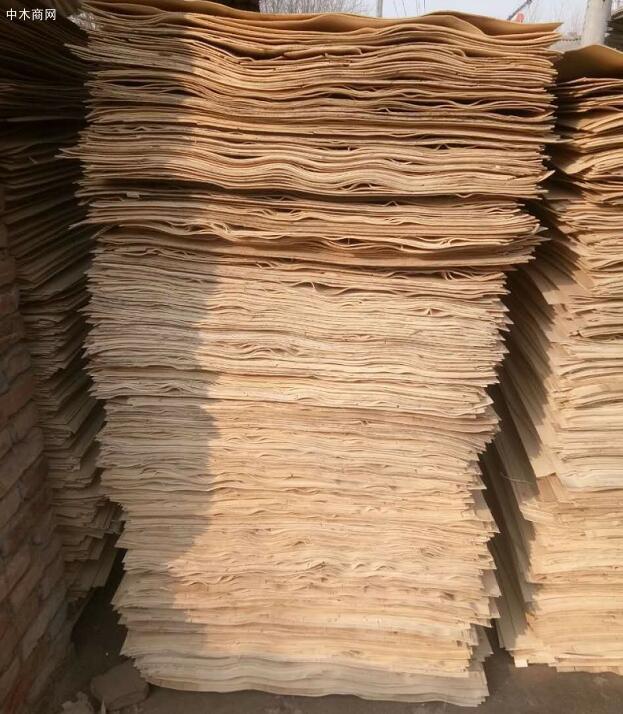杨木单板首选苏杭木业图片
