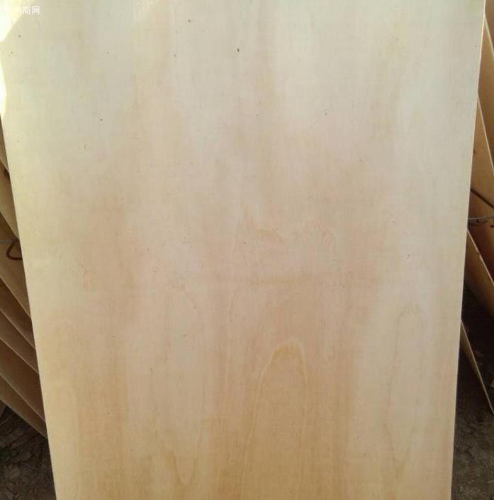 杨木单板什么价格